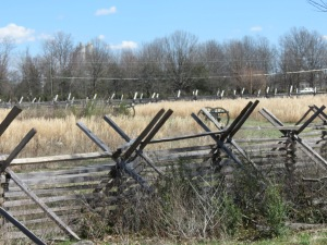 Fences on Battlefield